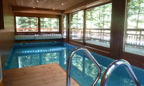 Secluded Luxury 250m2 Chalet with indoor pool 35223TCF73